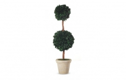 Hedera 2 ball 140cm green